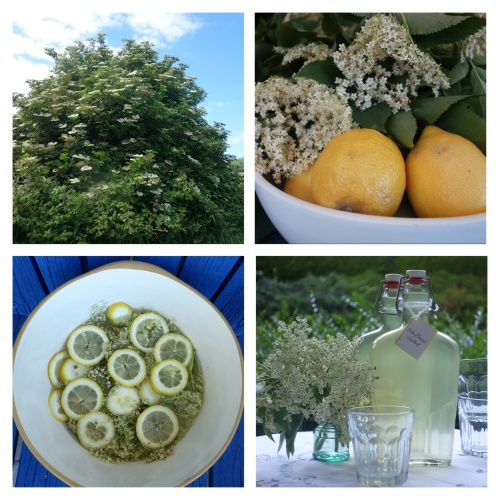 Irish Elderflower Cordial
