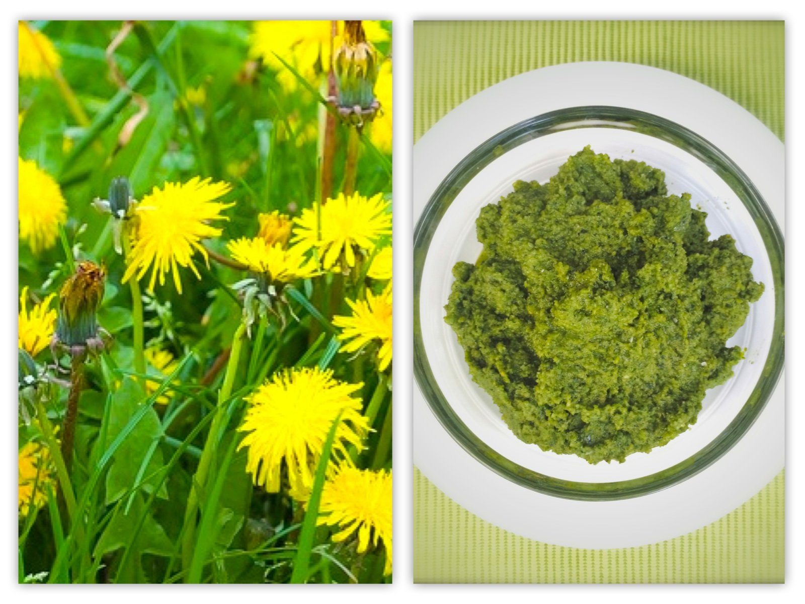 ramp pesto linguine with pea pesto meatless mondays dandelion pesto ...